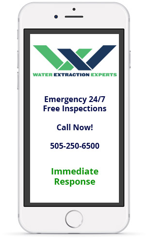 New Mexico Phone Image