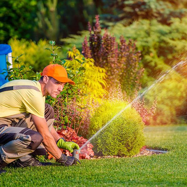 Sprinkler System Blowout