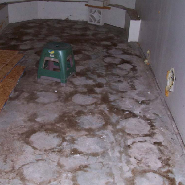 Marijuana Cleanup Water Damage