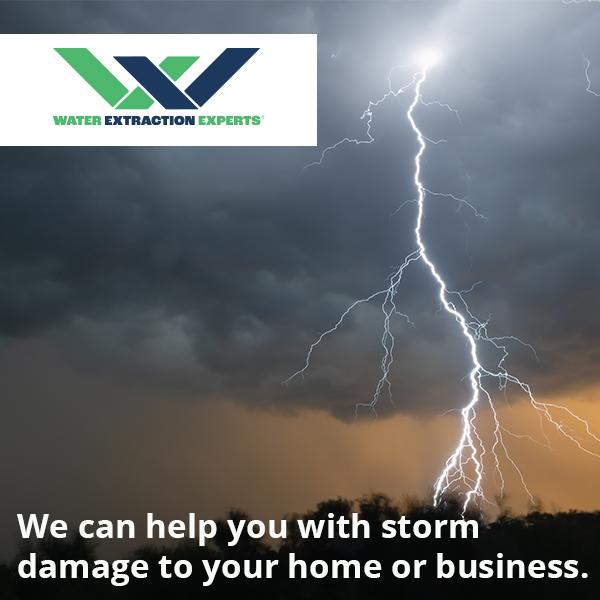 Storm Damage With Logo
