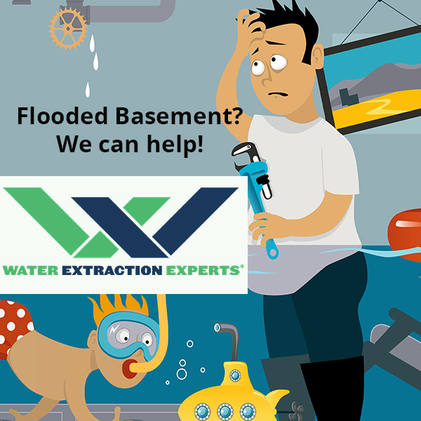 Flooded Basement Help